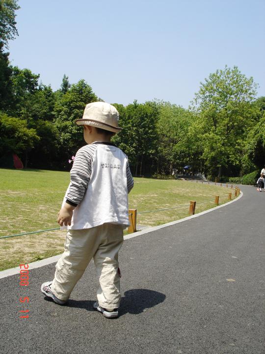 杭州动物园[好多好多图]