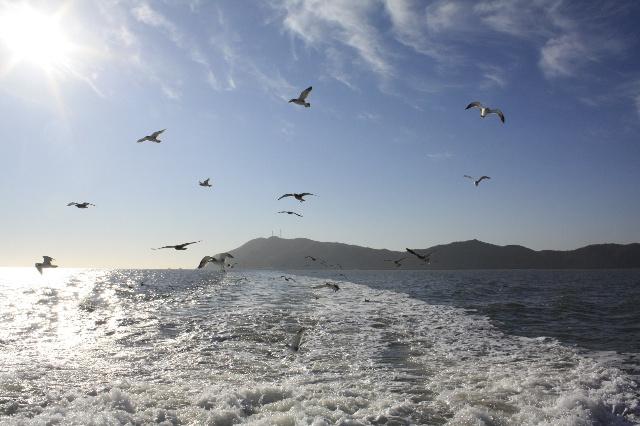 影像出行:丹东大鹿岛