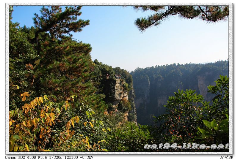 亚公山森林公园