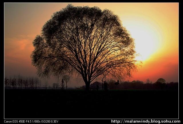 阳光下尘埃风景图片