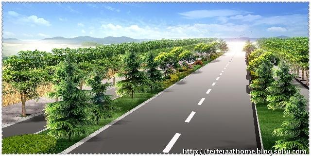 某城市道路景观设计