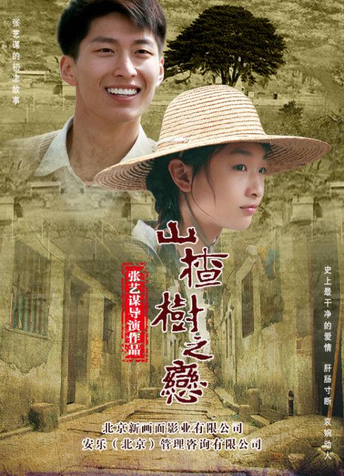 山楂树之恋在线完整版观看电影山楂树之恋DVD国语下载 山楂树之恋