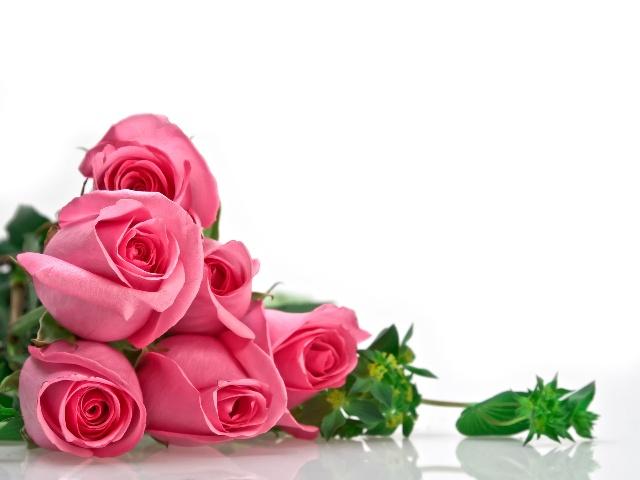玫瑰花茶合适拆配谦天星,薄荷,紫罗兰花茶,菩提子,金盏花,迷迭喷香