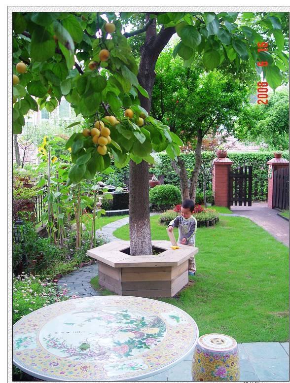 非常喜欢,想给自己家的花园做个参考 树下防腐木座椅