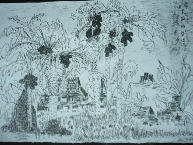 我的重笔画-木瓜的等待-画于11-6-11-我的重笔画