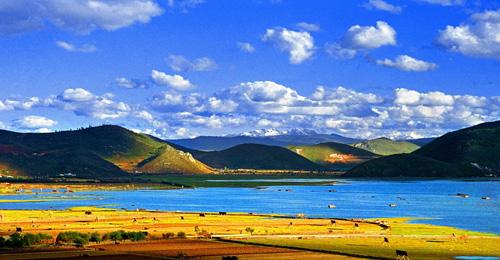 最冷 最美的地方 云南迪庆州